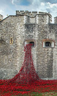 Weeping Window by Richard Lea-Hair and Historic Royal Palaces