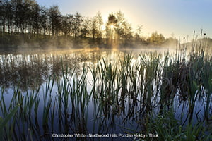 Spaces Christopher White - Northwood Forest Hills Pond in Kirkby (2) WEB